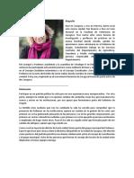 [11704]Miriam_Ferrer_candidatura_portavocia (1).pdf