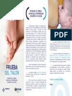 triptico-prueba-talon.pdf