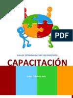Guia Estandarización del Proceso de Capacitación. Pablo Caballero