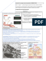 SN_TP2_Synapse_correction.pdf