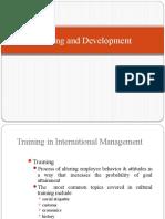 Training and Development of Expatriates