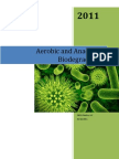 Aerobic and Anaerobic Biodegradation