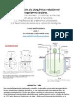 01 BQ IQUIM INTRODUCCION.pdf
