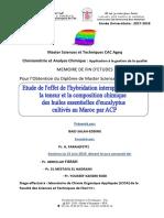 Etude de l'effet de l'hybridat - Salah-Eddine BAID_4917 (1).pdf