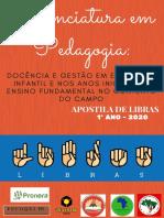 APOSTILA DE LIBRAS (2)