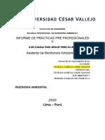 INFORME DE PRACTICAS PP II , YAVAR NOLE ALEXANDER