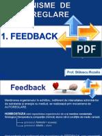 mecanisme_de_autoreglare_feedback_termoreglare_bioritm