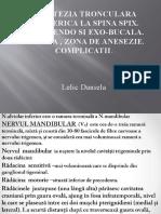 Anest Spina Spix Lelic DANIELA.pptx