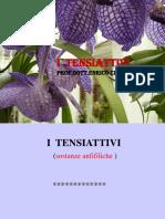 I TENSIATTIVI