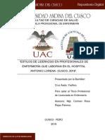 Liderazgo enfermeras Cusco.pdf