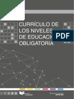Curriculov2.pdf