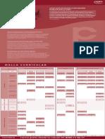 PLAN-ESTUDIO-CONTADURÍA-PÚBLICA-DIGITAL-VIRTUAL.pdf