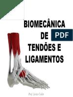 Aula 5 - Biomecânica de Tendões e Ligamentos2.pdf-1.pdf