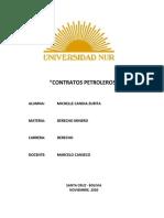 proyecto contratos petroleros.docx