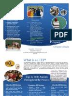 IEP Brochure