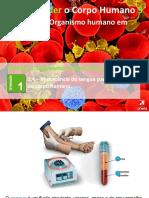 PPT1 O sangue