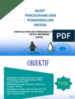 Audit PPI