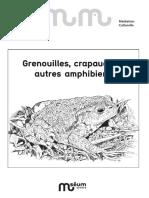 Amphibiens.pdf