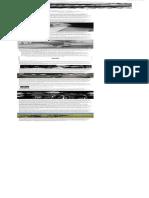 republicas-bananeras.pdf