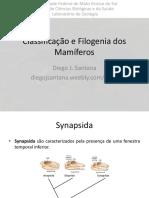 15_-_classificação_e_filogenia_dos_mamíferos