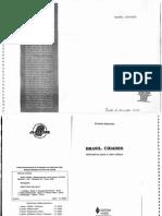 Livro BRASIL CIDADES.pdf