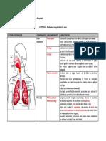 u3-l6-sistemul-respirator-la-om