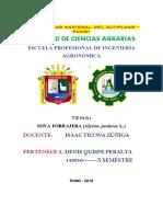 SOYA-FORRAJERA (1).pdf