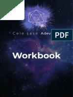 Workbook_Saptamana_1