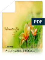 Project Feasibility Study2010