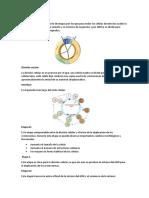 Biología proyecto