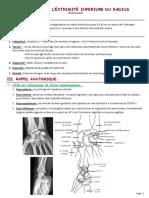 09-Fr-extremité-inférieure-du-radius (1)