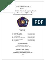 Kelas B_Evy Rosda Nur Afiyah_201710410311092_T1_Jurnal.docx