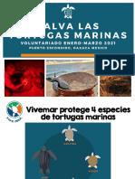 Voluntariado Vivemar ene-mar 2021.pdf
