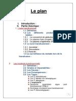 PFE meriem  finale.pdf