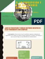 Capítulo 5_ La percepción y la toma de decisiones individual (Stephen P. Robbins Timothy A. Judge).pptx