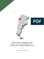 APUNTES PÚBLICO PROVINCIAL.pdf