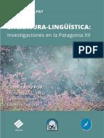 ILLPAT-Investigaciones-XII