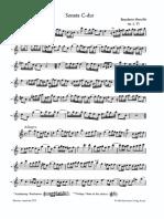 Sonata VI-VII - B. Marcelo (Flauto e B.C.)