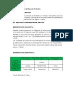 SEGMENTACION PAKISTAN.docx