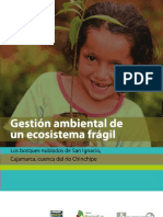 Gestión Ambiental de un ecosistema frágil - Los bosques nubados San Ignacio, Cajamarca, Cuenca del río Chinchipe