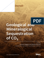Geological_and_Mineralogical_Sequestration_of_COsub2sub.pdf