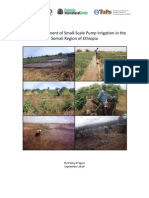 Impact Assessment of Small‐Scale Pump Irrigation in the Somali Region of Ethiopia
