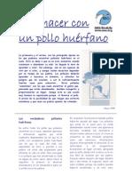 pollohuerfano2