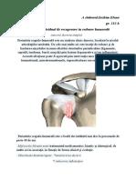 Program-individual-de-recuperare-în-redoare-humerală