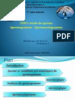 TD embrio.pdf