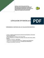 LÍNEAS DE INVESTIGACIÓN NIEYOLC