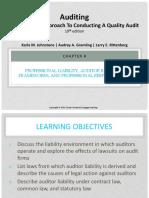 Chapter 4 Audit.pdf