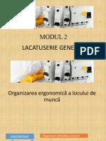 2.Organizarea ergonomica a locului de munca