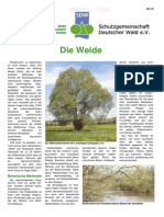 Die_Weide.pdf