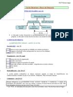 77354347-Resumo-Da-Ldb-Prof-Fabiana-Lagar.pdf